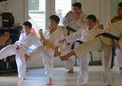 printecton-Shotokan-Sankukai-022