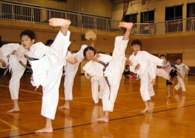 printecton-Shotokan-Sankukai-026